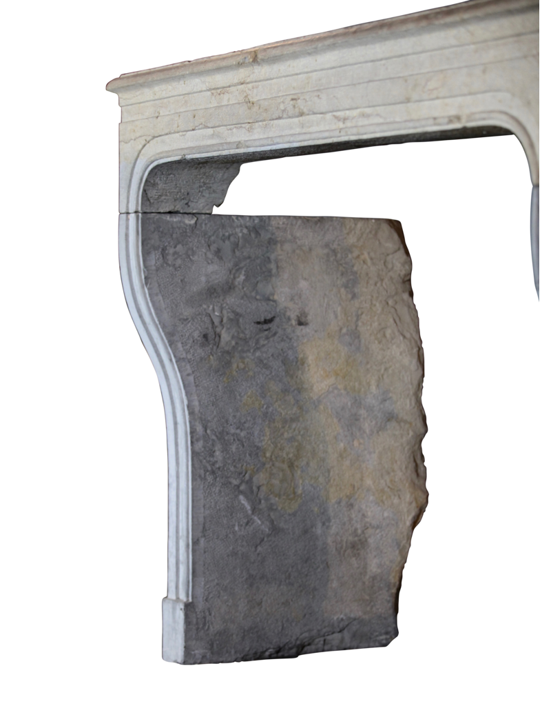 The Antique Fireplace Bank Bicolor LXIV Period French Antique Stone Surround