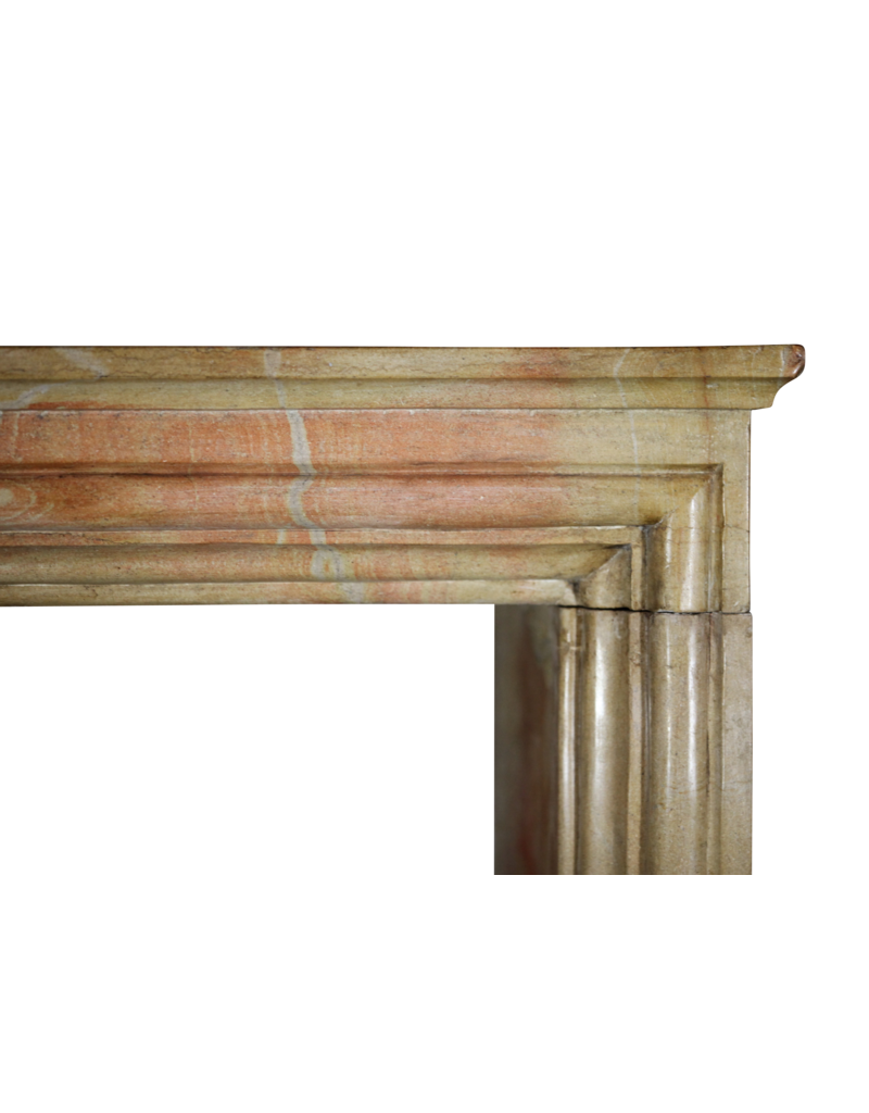 Bicolor LXIV Style French Antique Fireplace