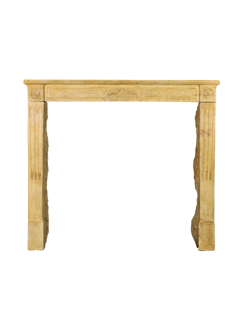 The Antique Fireplace Bank Delicate Louis XVI Style Vintage Fireplace Mantle