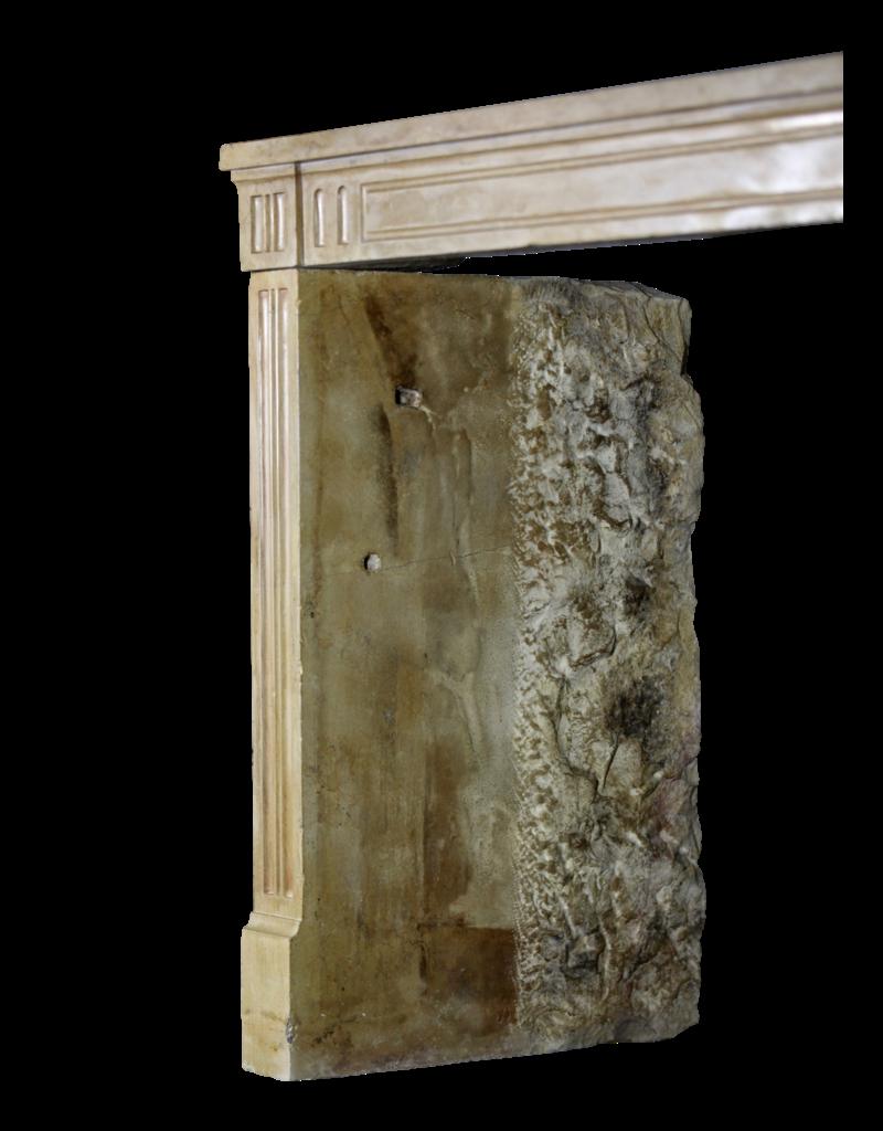 Clásica Francesa Duro Piedra Caliza Chimenea Rodean Un Agradable Diseño Interior Atemporal