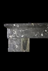 Fossil Atemporal Chimenea De Piedra Surround