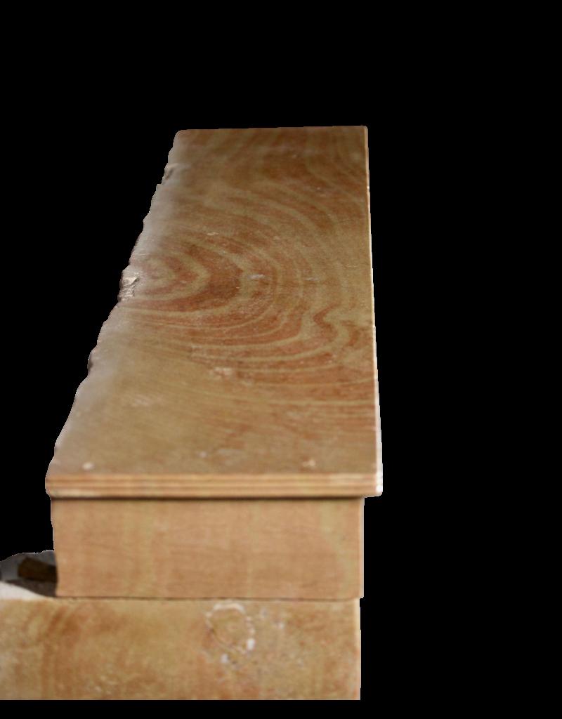 Chimenea Creado Por La Naturaleza De La Vendimia Francesa Bicolor Piedra Caliza