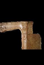 Maison Leon Van den Bogaert Antique Fireplaces & Vintage Architectural Elements Clásica Francesa Mármol Chimenea De Piedra