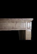 Clásico Francés Luis Xvi Período Chimenea De Piedra