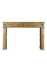 Chique French Antique Fireplace Surround