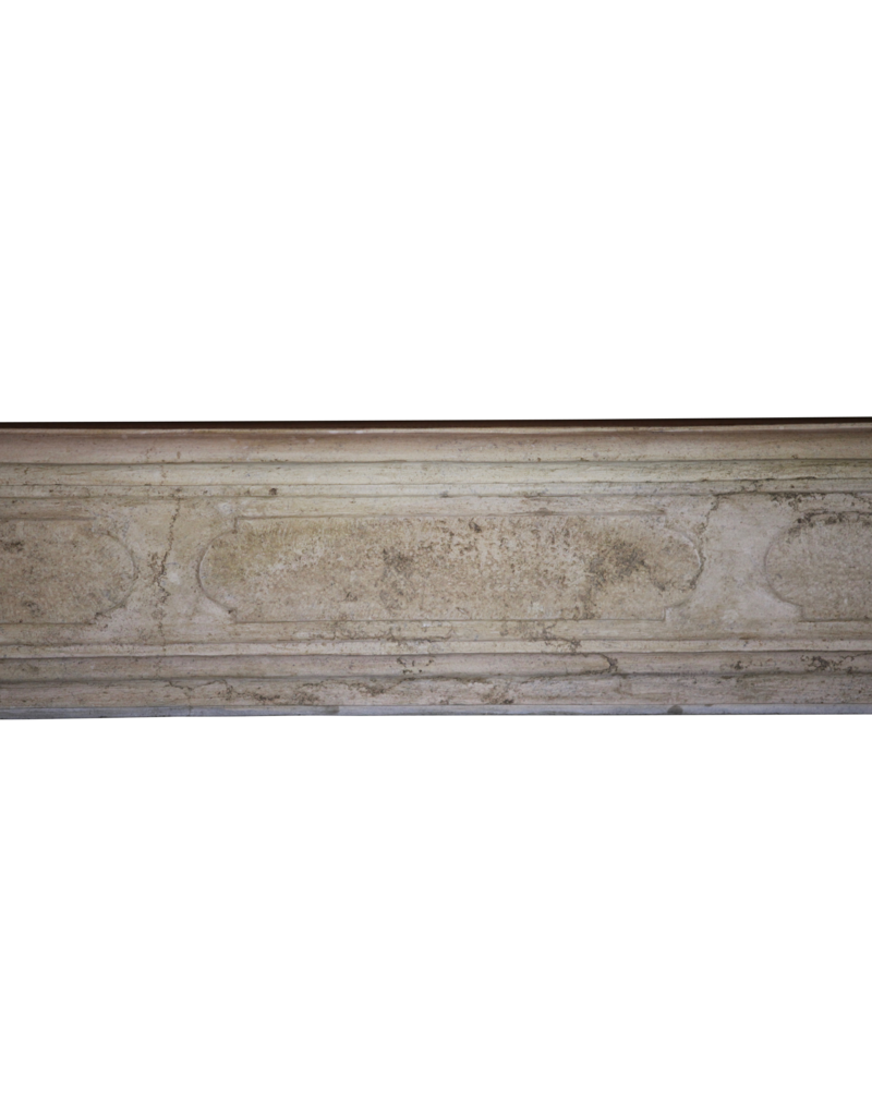 The Antique Fireplace Bank Bicolor LXIV French Antique Hard Stone Surround