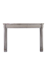 The Antique Fireplace Bank French 19Th Century Bicolor Fireplace Surround