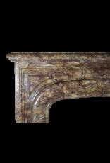 Abondante Antique Fireplace Surround