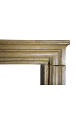 Elegante Französisch Antike Kamin Verkleidung