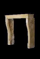 Elegante Französisch Antike Kamin-Mantel