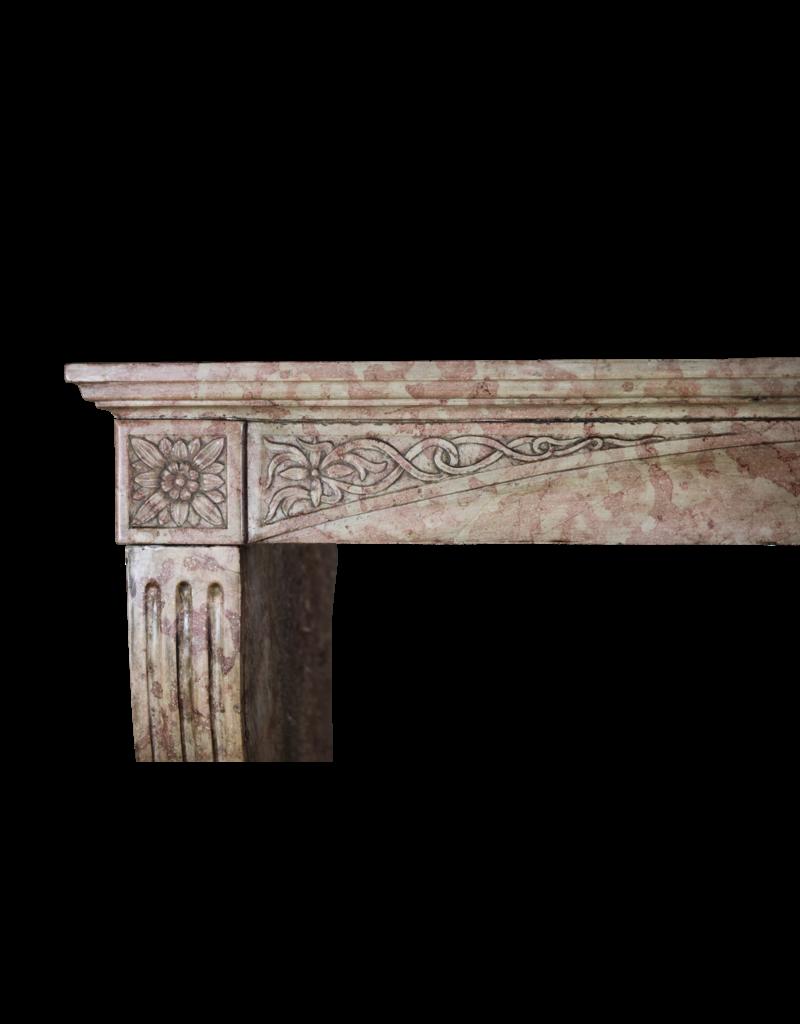 Francés Borgoña Antiguo Chimenea