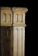 Clásica Francesa Bicolor Piedra Caliza Chimenea