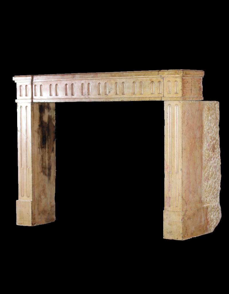 Maison Leon Van den Bogaert Antique Fireplaces & Vintage Architectural Elements Clásica Francesa Bicolor Piedra Caliza Chimenea