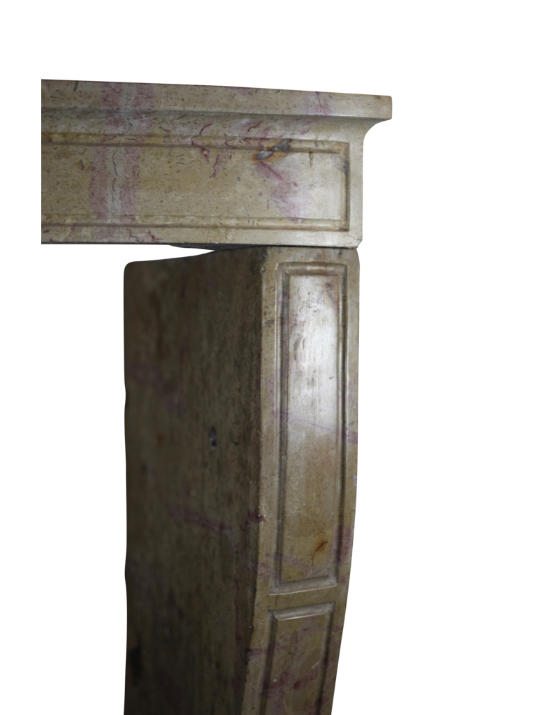 Bicolor Created By Nature French Fireplace Surround
