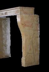 The Antique Fireplace Bank Elegante Chimenea Francesa