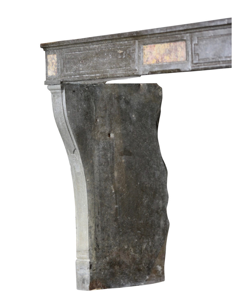 Francés Antiguo Elegante Chimenea
