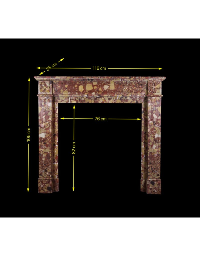 19Th Century French Vintage Fireplace In Brêche Marble