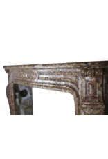 Elegant French Antique Fireplace Surround