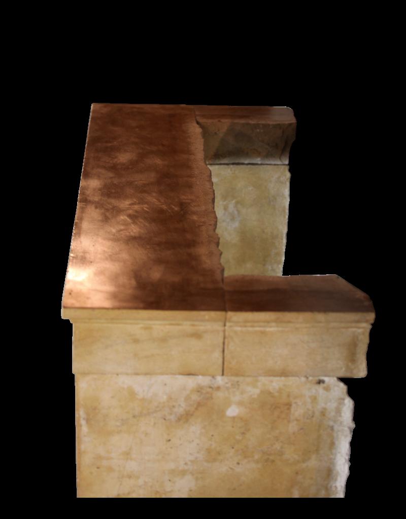 Empfindliches Klassisches Französisch Antike Kamin Verkleidung