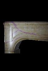 Französisch Zweifarbig Hartsteinkamin Surround