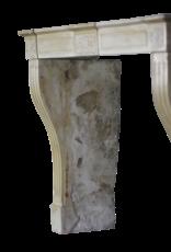 Empfindliche Directoire Stil Marmor Stein Kamin Verkleidung