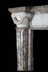 18Th Jahrhundert Großartige Qualität Zweifarbig Marmor Antik Kamin Maske