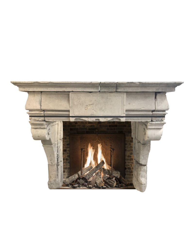 French Rustic Renaiscance Fireplace Surround