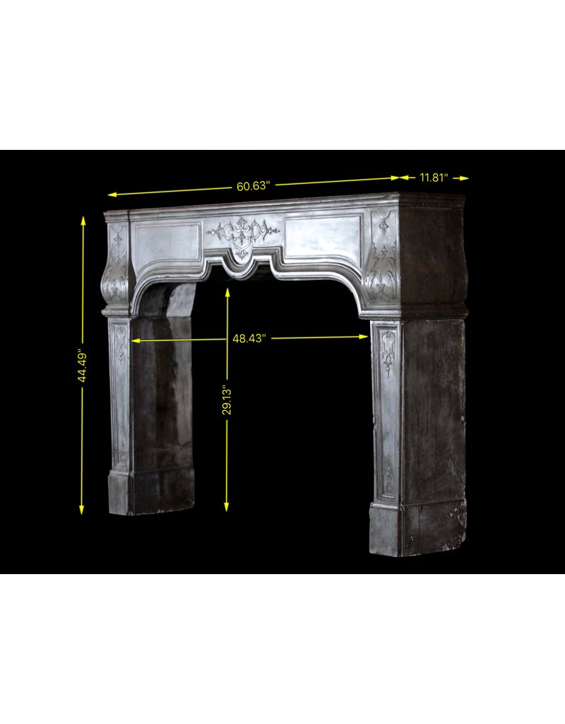 Empfindliches Französisch Antike Kamin Verkleidung