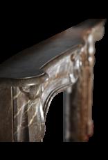 Maison Leon Van den Bogaert Antique Fireplaces & Vintage Architectural Elements Belga Fuerte Del Siglo 18 Chimenea