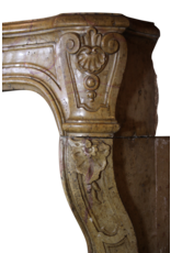 One Of Kind French Antique Fireplace Surround
