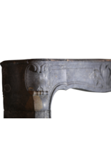 18Th Century Fine French Fireplace In Hard Stone With Floral Detail