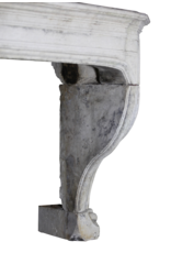 Estilo Francés Del Siglo 18 La Piedra Caliza Antigua Chimenea