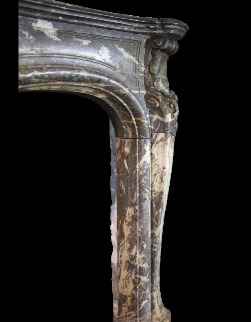 Maison Leon Van den Bogaert Antique Fireplaces & Vintage Architectural Elements Amplia Mármol Belga Clásico Chimenea En Belga Gris Gris D'ardenne