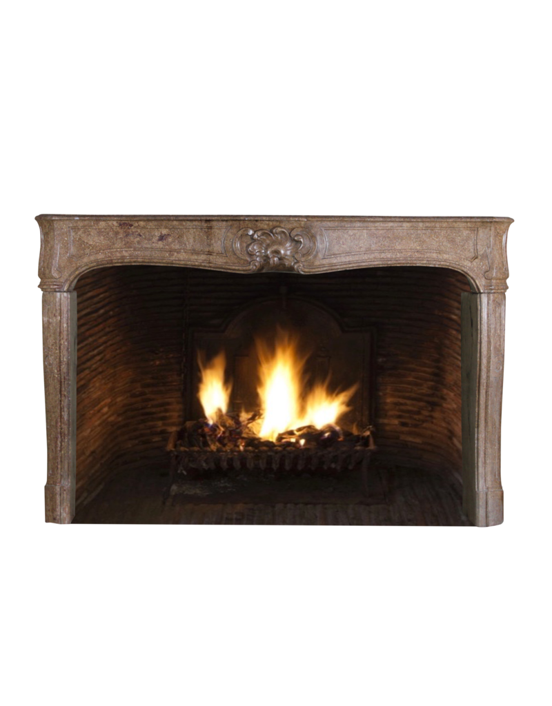 Classic Chique French Vintage Fireplace Surround