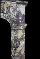 Französisch Belle Epoque Antike Kamin Verkleidung