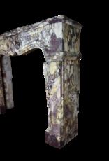 Maison Leon Van den Bogaert Antique Fireplaces & Vintage Architectural Elements Francés Belle Epoque Período Antiguo Chimenea De La Chimenea