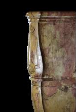 Maison Leon Van den Bogaert Antique Fireplaces & Vintage Architectural Elements Fuerte Extrema Bicolor Duro De Piedra Antiguo Chimenea
