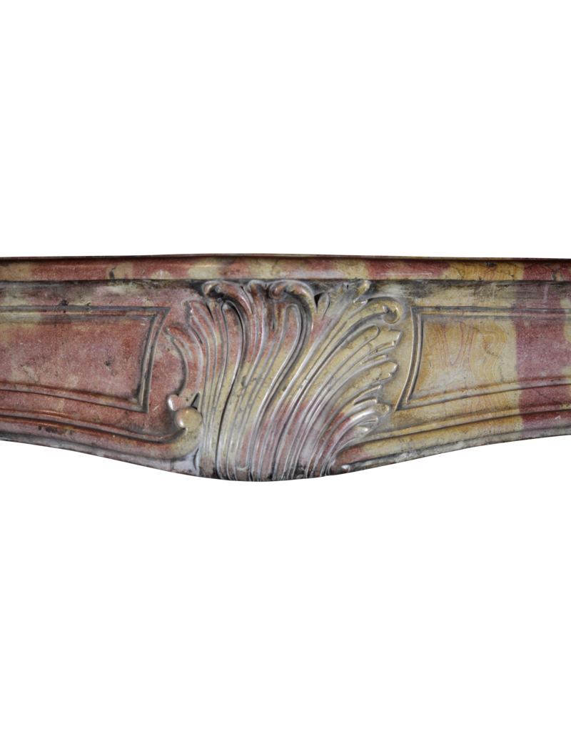 The Antique Fireplace Bank Created By Nature Bicolor Vintage French Surround
