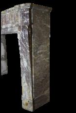 19. Jahrhundert Belle Epoque Marmor Kamin