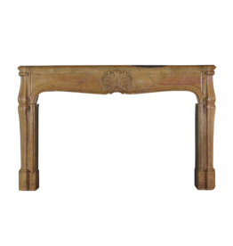 French Regency Period Fireplace Surround In Bicolor Hard Limestone