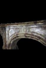 Maison Leon Van den Bogaert Antique Fireplaces & Vintage Architectural Elements Francés Mármol Chique Real Antiguo Chimenea
