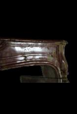 Maison Leon Van den Bogaert Antique Fireplaces & Vintage Architectural Elements Fuerte Bicolor Timeless Cheminea