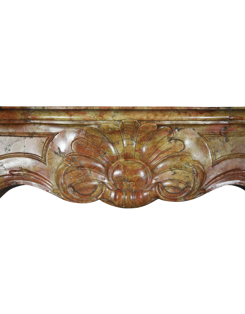 18Th Century Bicolor Stone Created By Nature French Fireplace Surround
