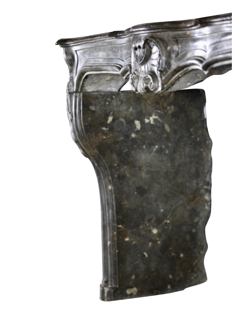 Del Periodo  Siglo 18 Francés Antiguo Revestimiento En Piedra Fósil