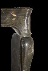 Fósil De Piedra Siglo 17 Chique Antiguo Francés Revestimiento En La Oscuridad