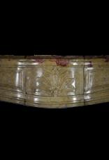 Creado Por La Naturaleza De La Piedra Caliza Francesa Royal Antiguo Chimenea