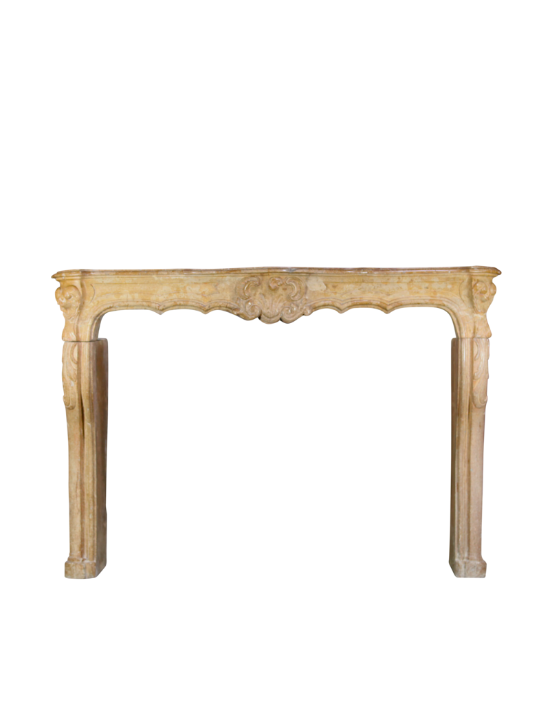 18Th Century Chique French Vintage Fireplace Surround