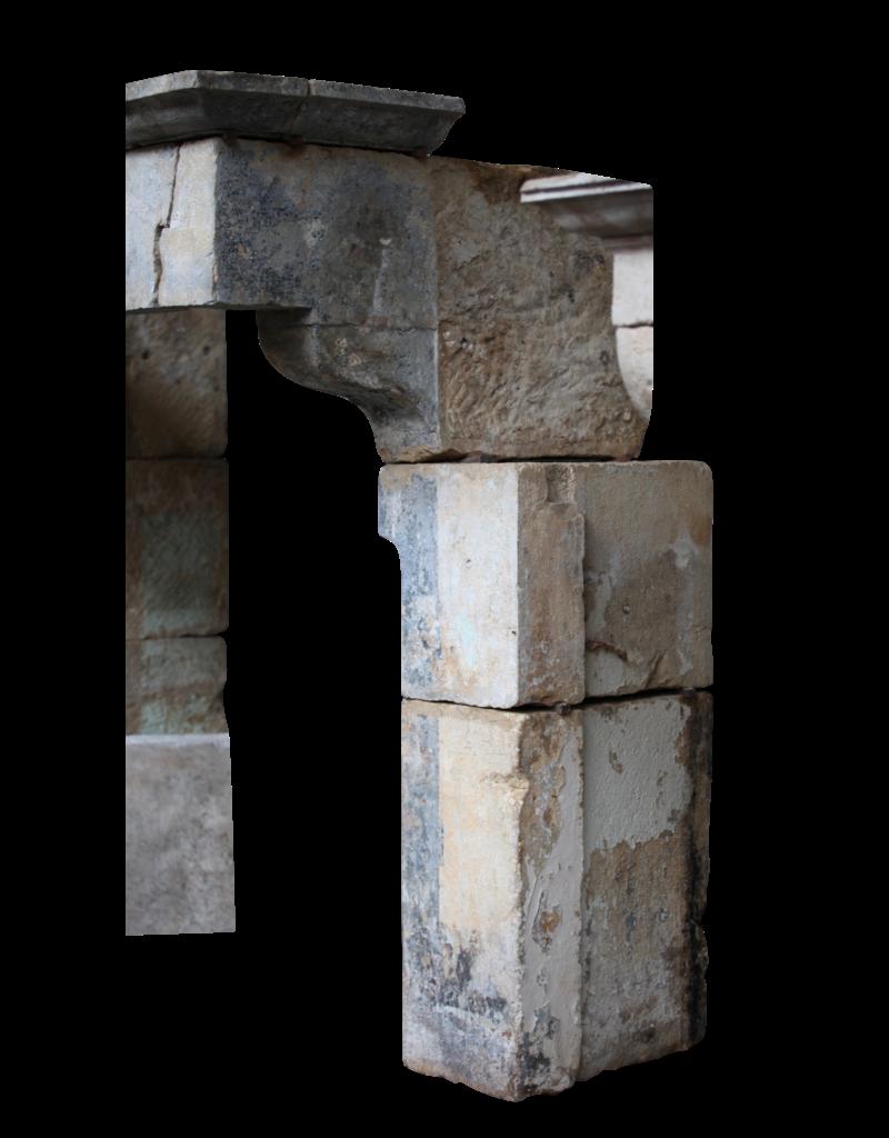 19. Jahrhundert Französisch Schloss-Art-Antike Kamin Verkleidung