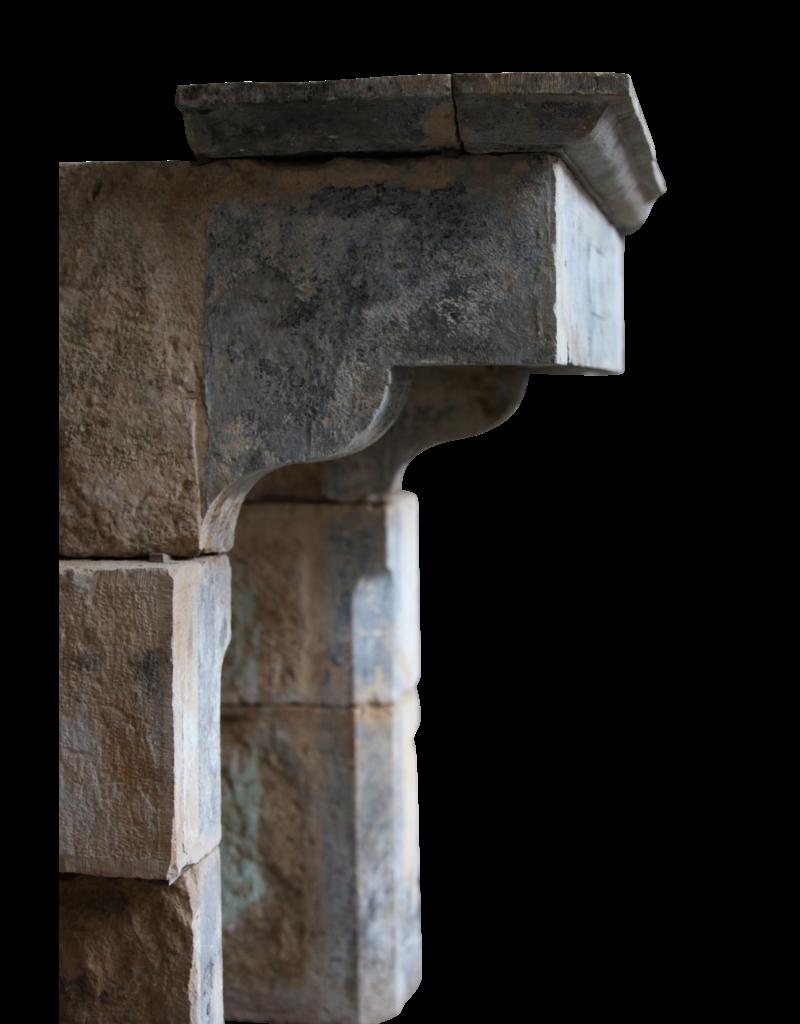 Francés Del Siglo 19 Castillo De Estilo Antiguo Cheminea
