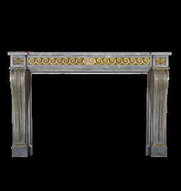 Maison Leon Van den Bogaert Antique Fireplaces & Vintage Architectural Elements Estilo XVI Grand Salon Revestimiento En Louis Con Latón Original
